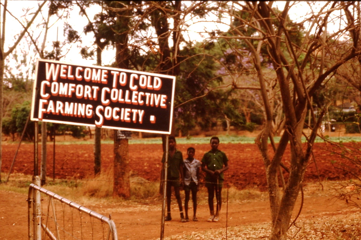 ZISA, Institute for Southern Africa
