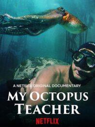 Mein Lehrer der Krake